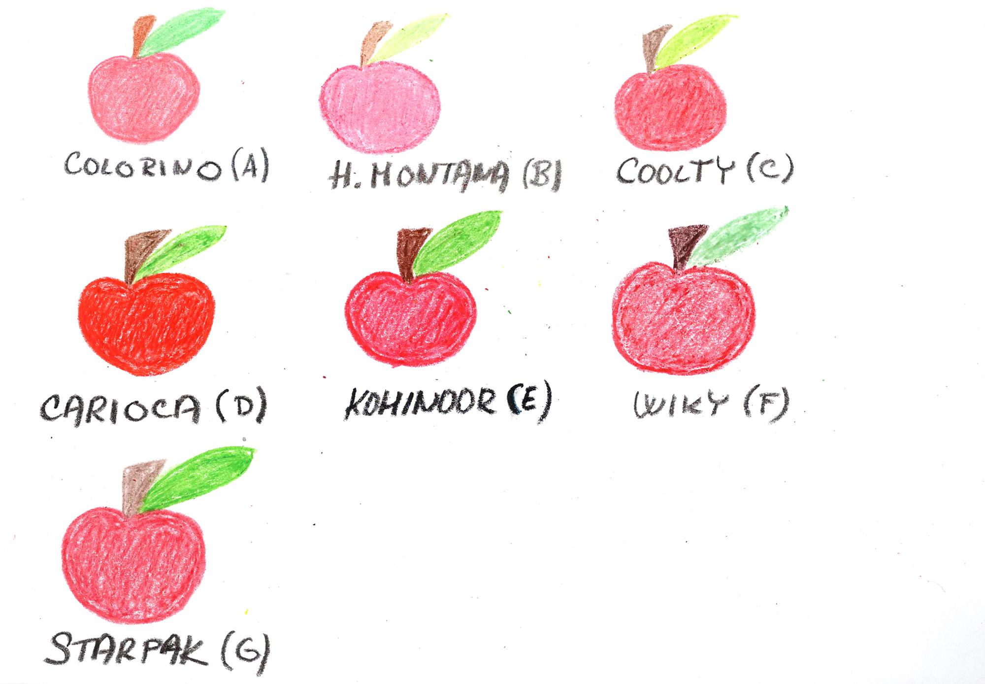 6f0fc9fad42 Jaké voskovky vybrat do školy  Zjistíte v našem testu – Školní svět
