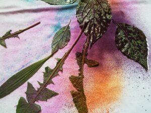 Traviny přestříkané barvami na textil Cadence