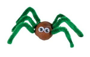 pavouk z kaštanů