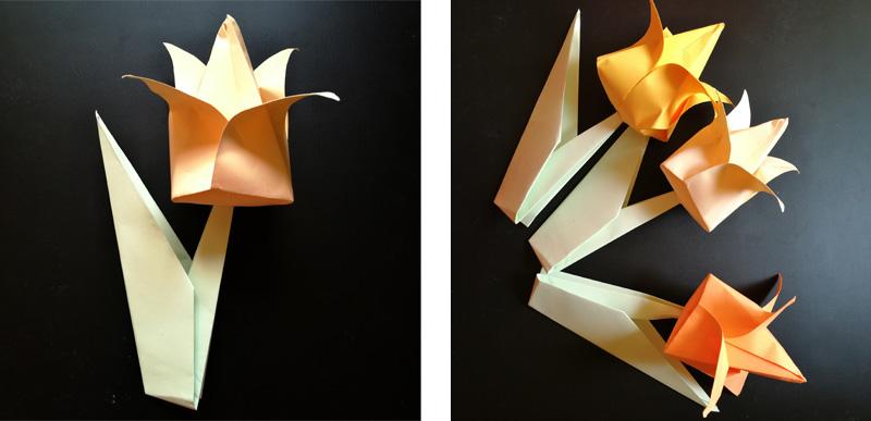 Detail složeného tulipánu s lístkem