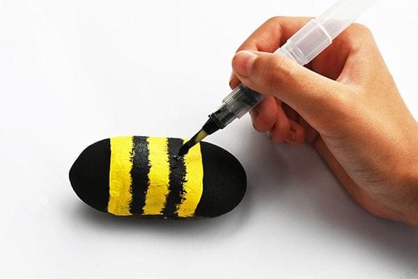 pruhy včelky